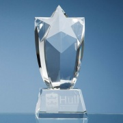8in Optic Crystal Starburst Award