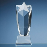 10in Optic Crystal Starburst Award