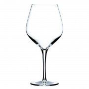 65cl Exquisit Burgundy Wine Glass by Stolzle