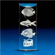 Crystal Curved Rectangle Award with 3D Laser Engraving