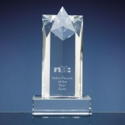 8in Optical Crystal Star Column Award