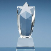 9in Optic Crystal Starburst Award